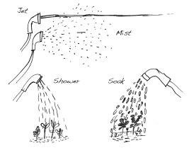 How to water a garden.